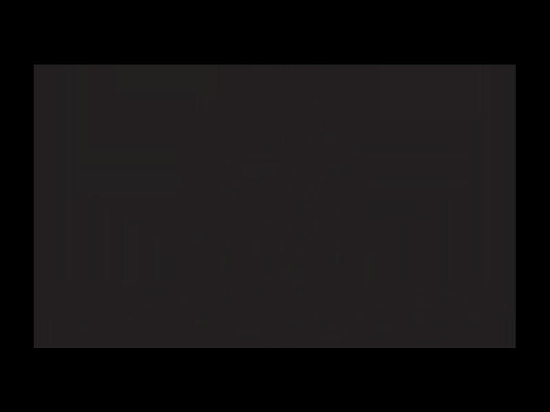 Dark Horse Institute logo